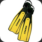 Cressi Pro Light rental fins